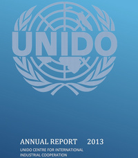 2013 CIIC Annual Report (ENG)
