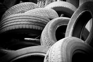 "Results of the environmental programme ""Tire-2018"" announced"