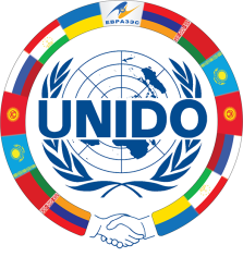The UNIDO Centre in Russia turns 30